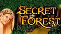 Игровые автоматы Игровой умная голова Secret Forest