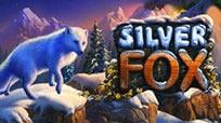 Игровые автоматы Красочный игровой аппарат Silver Fox