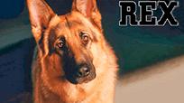 Игровые автоматы Онлайн игровой агрегат Rex: играть бесплатно