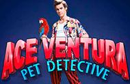 Игровые автоматы Игровой автомат Ace Ventura— играйте в клубе онлайн